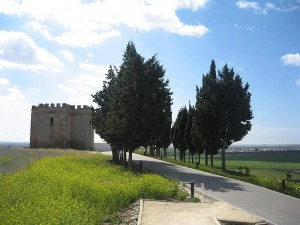 castillo-doña-blanca-vivanco
