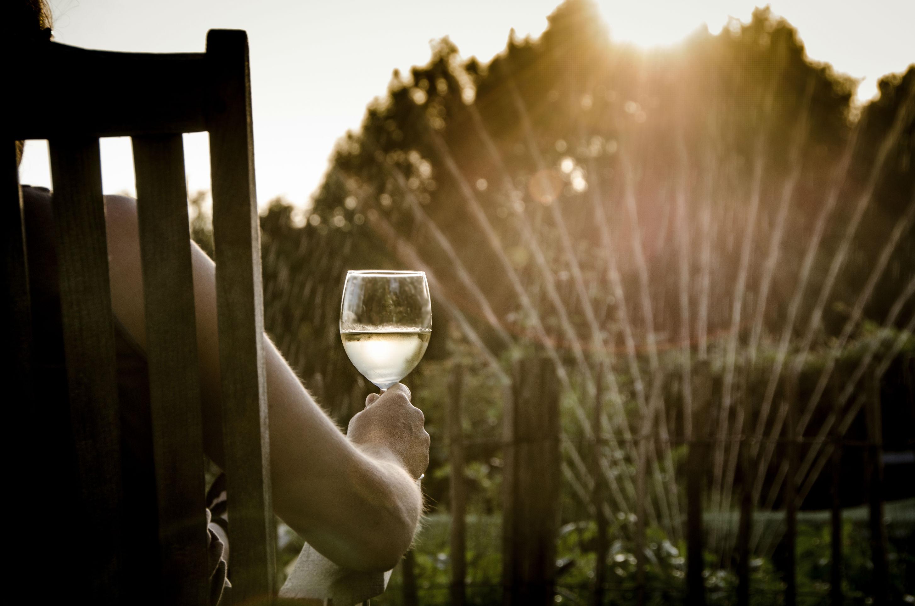vino-blanco-verano
