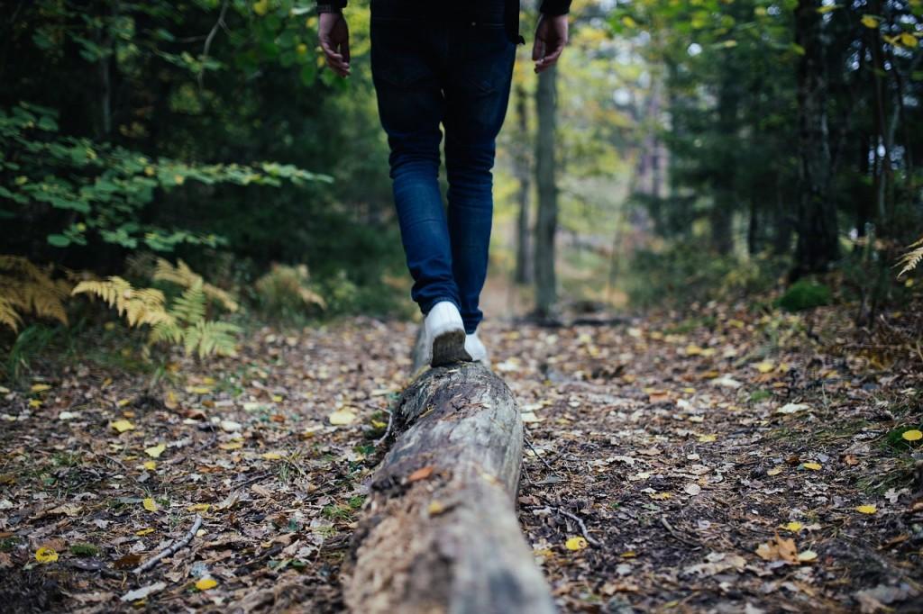 persona andando bosque