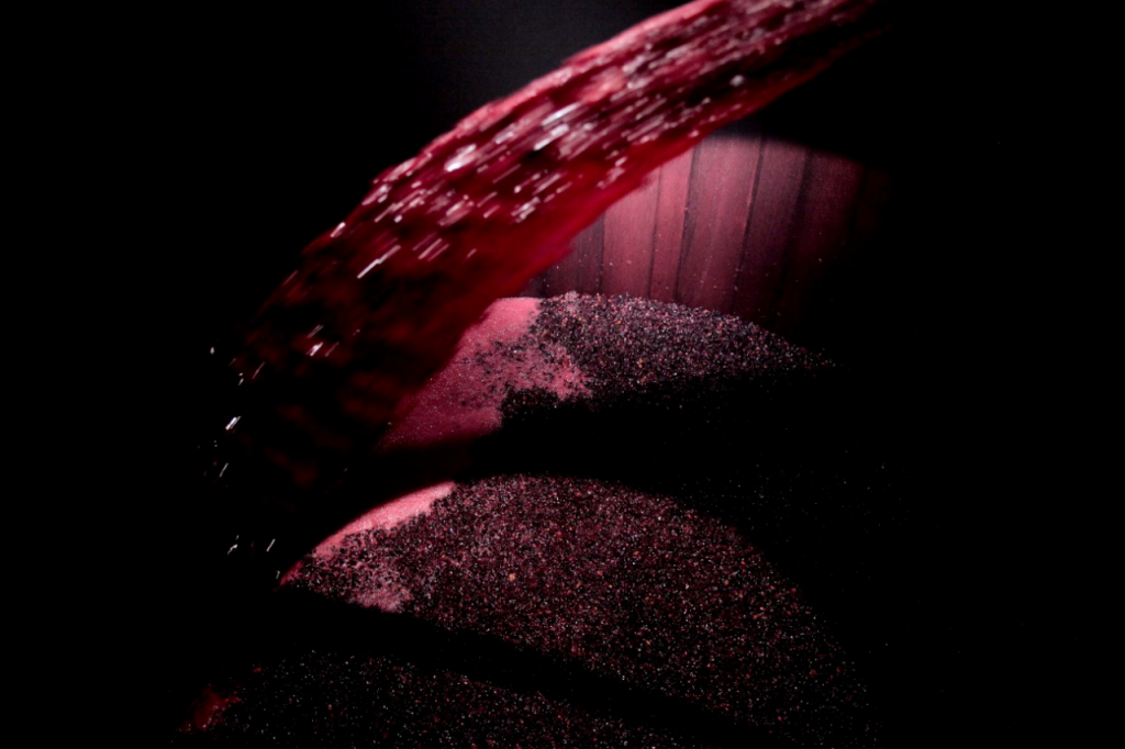 uvas recipiente vino