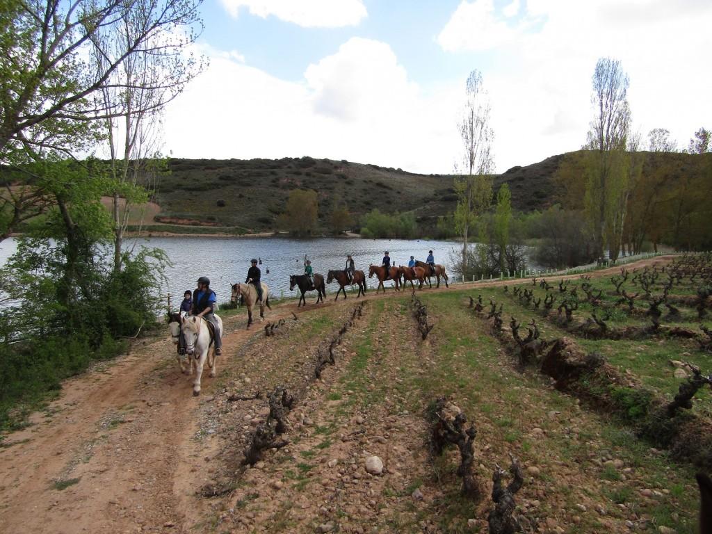 camino caballos paseo ninos