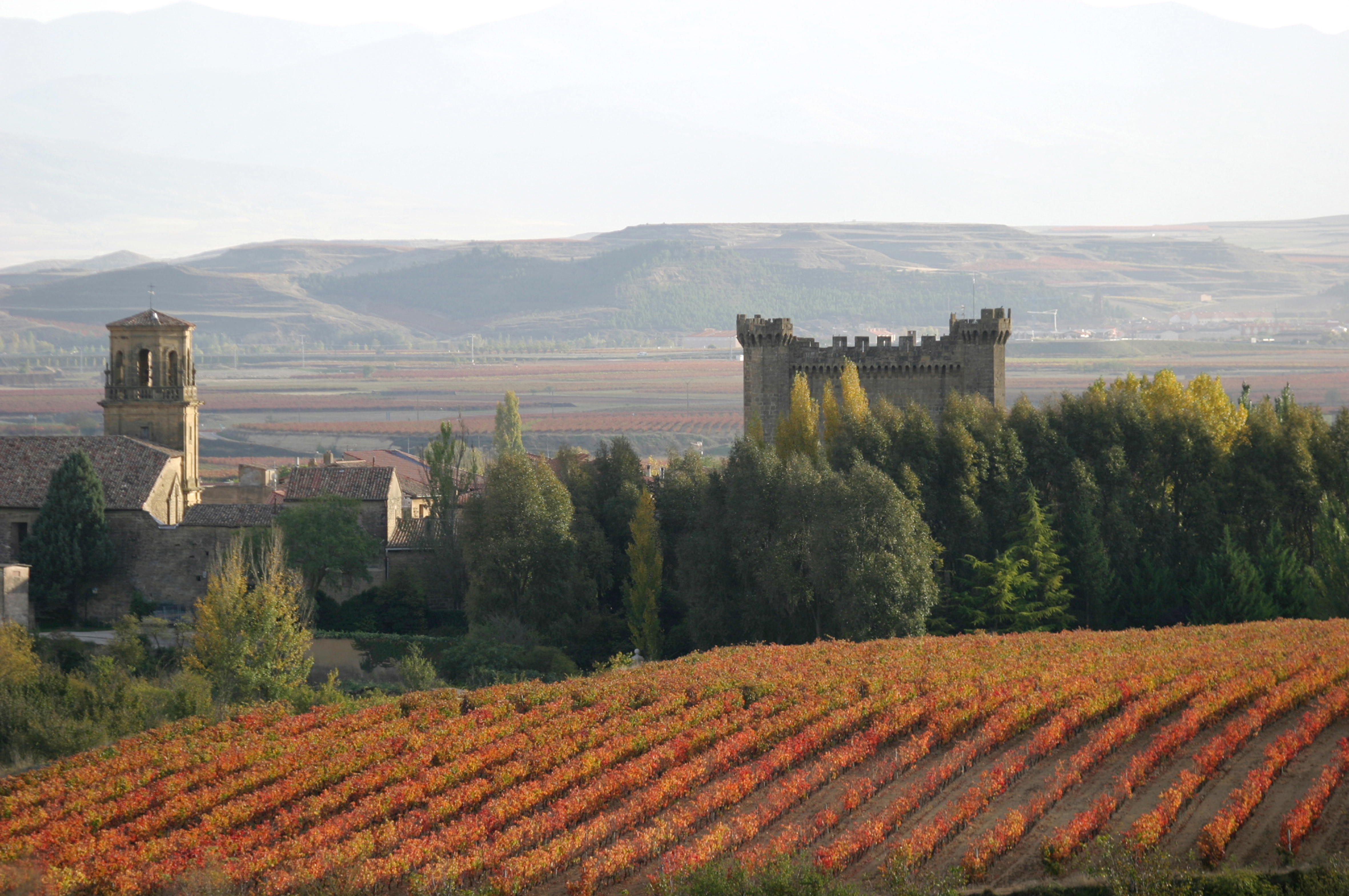 sajazarra castillo paisaje vinedos