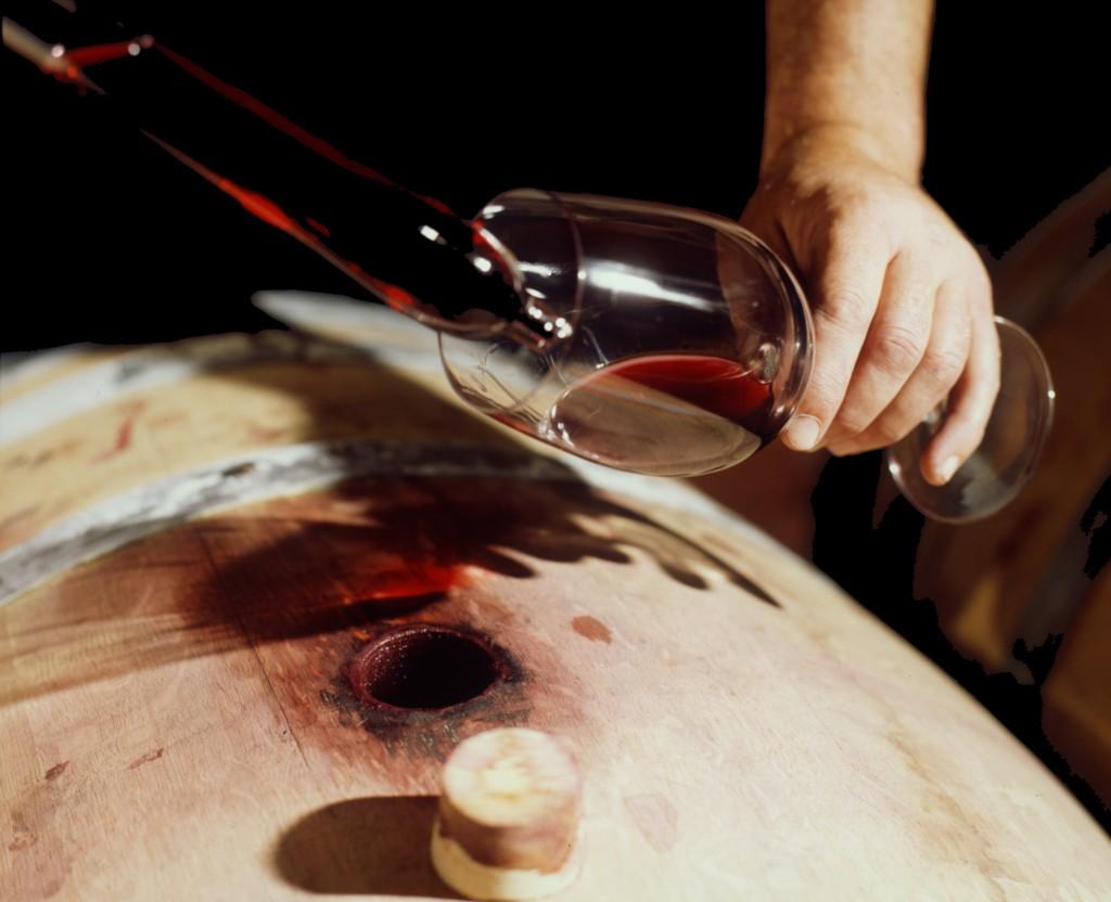 maestro bodeguero barrica vino