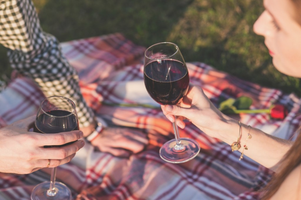 picnic vino cita