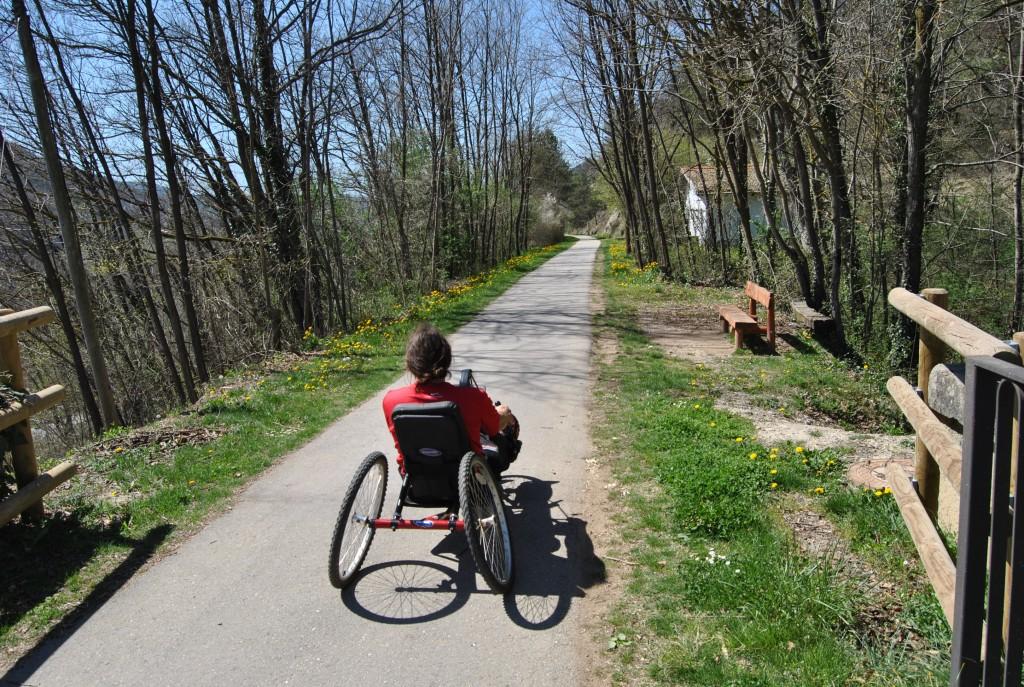 silla ruedas naturaleza