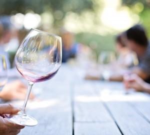 Degustación de vino | Vivanco