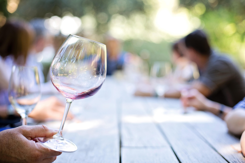 Degustación de vino   Vivanco
