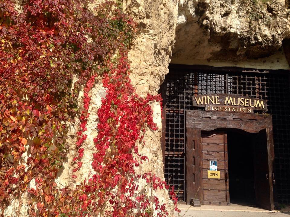 pleben wine museum
