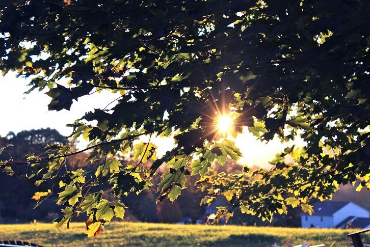 rayo sol campo