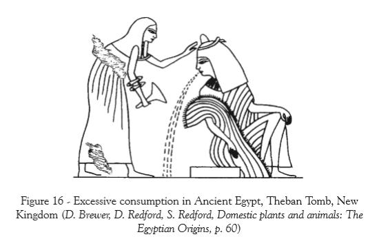 Drunk Egypt