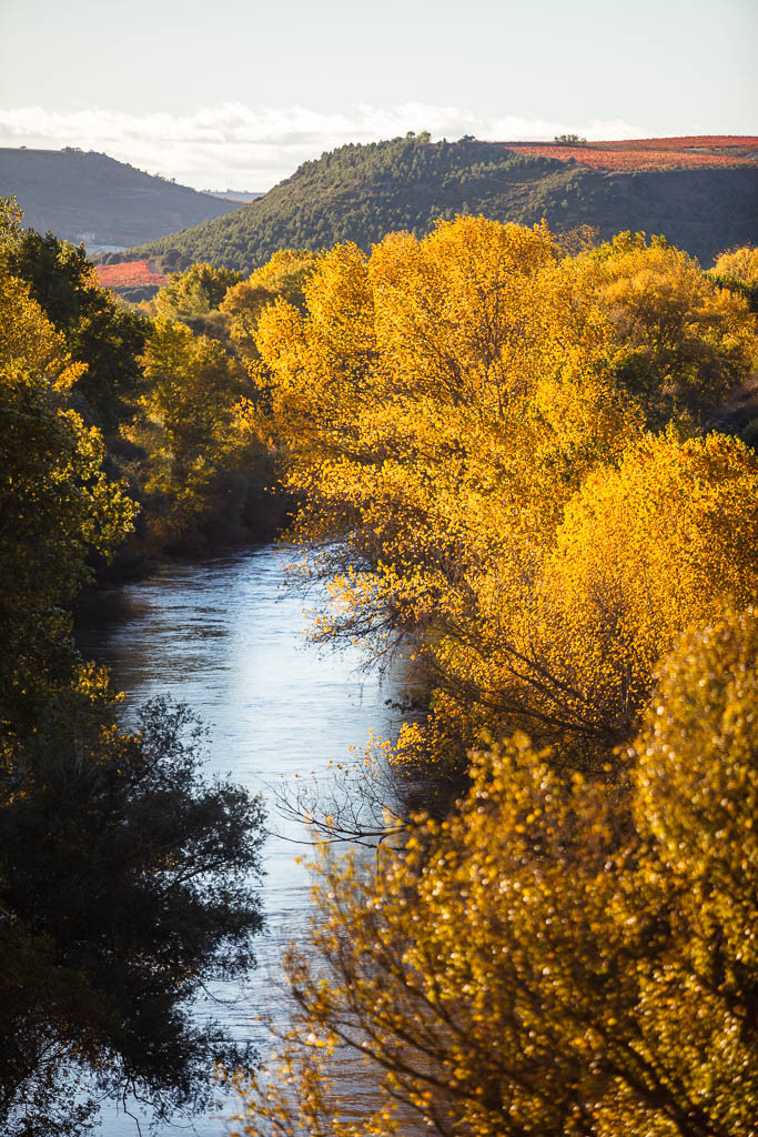 Río Ebro en otoño