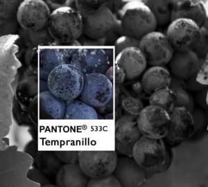 pantone tempranillo_cabecera