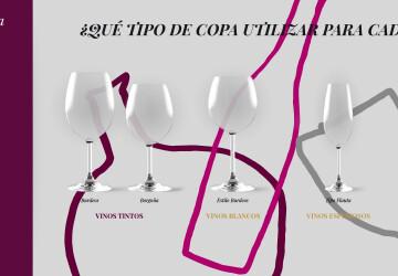 infografia copas vino
